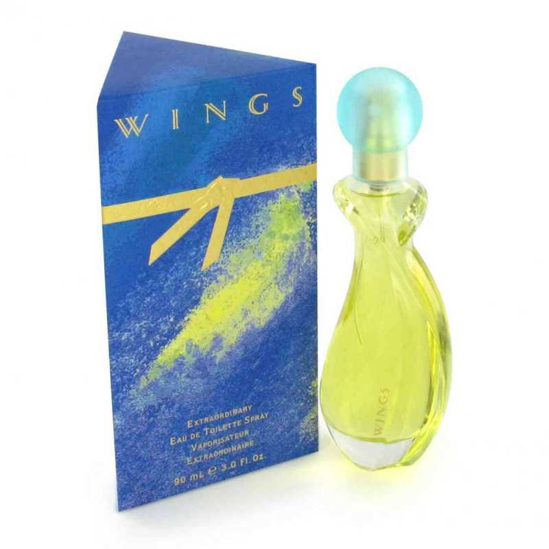 Wings For Woman