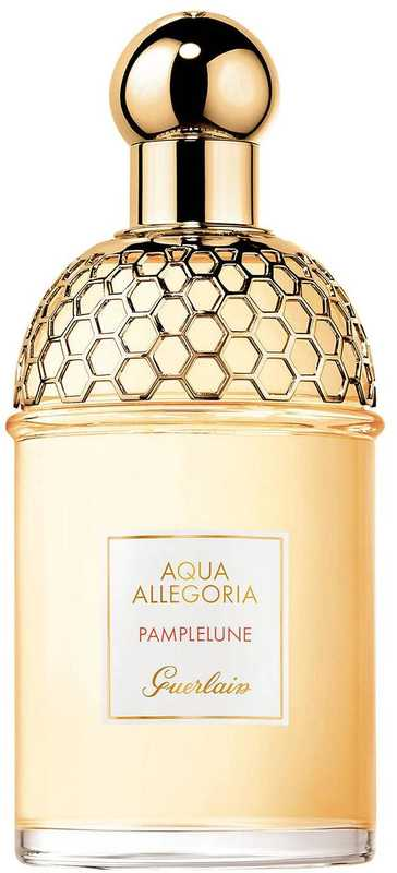 Aqua Allegoria Pamplelune